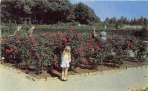 Tulsa Oklahoma~Woodward Park-Tulsa Rose Garden~Little Girl Smelling Flowers~1953