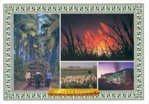 Reunion, 70-80s   4-view postcard