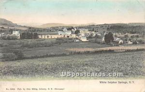 Birds Eye View White Sulphur Springs NY 1909