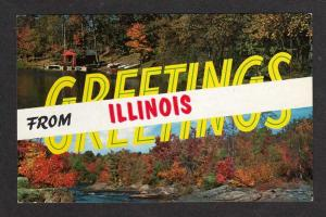 IL Greetings from ILLINOIS Postcard PC