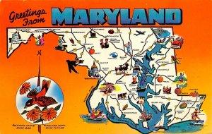 Greetings from Maryland USA Postcard Unused