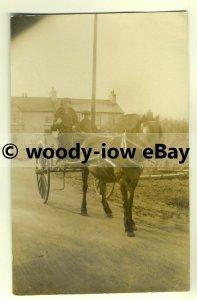su1563 - Horse & Carriage - Unknown Location - postcard