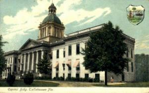State Capitol Tallahassee FL 1907