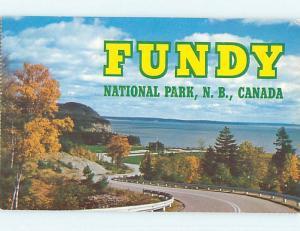 Unused Pre-1980 TOWN VIEW SCENE Alma New Brunswick NB p8877