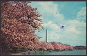 Washington Monument,Washington,DC Postcard BIN