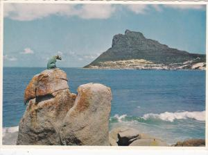 HOUT BAY, South Africa, 1950-1970's; The Sentinal At The Entrance To The Bay ...