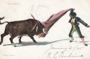 Bull Fighting ; Un Capotazo , 1905