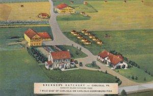 CARLISLE , Pennsylvania, 1930-40s ; Brenner's Hatchery