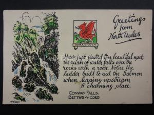 North Wales BETTWS-Y-COED Conway Fall Artist C. Wern c1941 by Charles Worcester