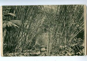 192723 IDONESIA Jakarta Vintage postcard
