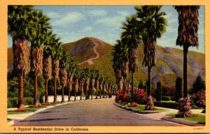 California A Typical Residential Drive 1953 Curteich