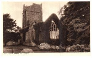 1757  Ireland  Killarney  1920 Muckross Abbey