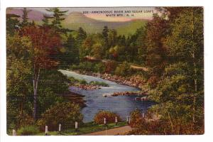 Ammonoosuc River and Sugar Loafs White Mountains, New Hampshire, Bisbee Press...
