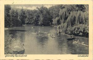 Hungary Tapolca lake boats swan