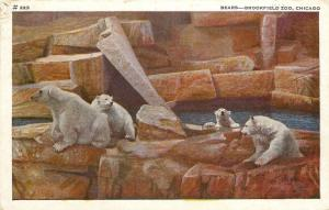 Chicago Illinois~Brookfield Zoo~Polar Bears~1944 Postcard