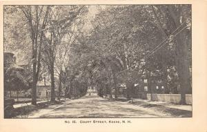 Keene New Hampshire~Court Street Scene~Fences & Trees by Sidewalk~Carriage~c1905
