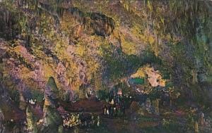 New Mexico Carlsbad Caverns National Park The Big Room