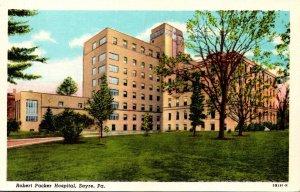 Pennsylvania Sayre Robert Packer Hospital Curteich