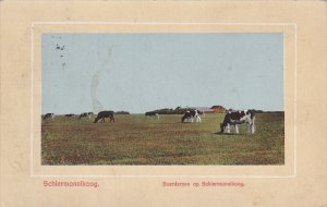 SCHIERMONNIKOOG, Waddeneilanden, Netherlands, PU-1916; Boerderyen Op Schiermo...