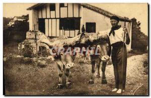 Old Postcard Folklore Guethary Basque Country copings oxen