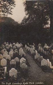 LONDON , England , 1908 ; HYDE PARK , The Dog's Cemetery