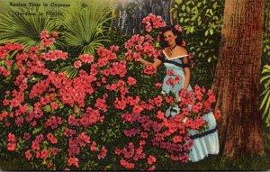 Florida Cypress Gardens Azalea Time