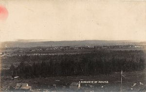 G24/ Mesick Michigan RPPC Postcard c1910 Birdseye View