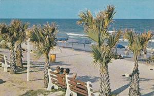 Bench on beach , MYRTLE BEACH , South Carolina , 1950-60s