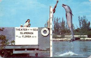 Florida Keys Islamorada Theater Of The Sea Jumping Porpoise