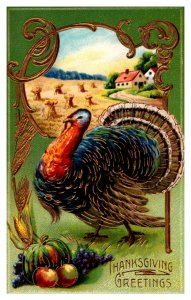 Thanksgiviing  Turkey  wheat field Barn