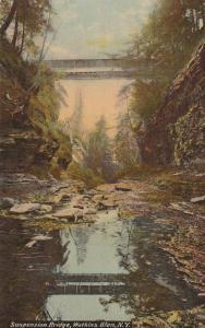 Suspension Bridge - Watkins Glen State Park NY, New York - DB
