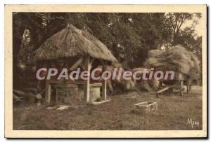 Postcard Old Quiberville Sur Mer Vieux Puits