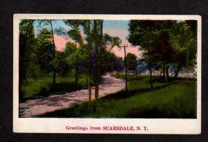 NY Greetings From Scarsdale New York Vintage Postcard Carte Postale