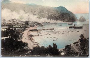 Catalina Island, California Postcard Bird's-Eye Avalon Harbor View GLOBE PC 1910