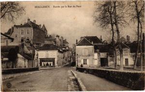 CPA BEAUGENCY - Entrée par la Rue du Pont (270657)