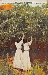 MT MORRISON CO~PICKING WILD FLOWERS-PARK RED ROCKS-GARDEN TITAN~1908 POSTCARD