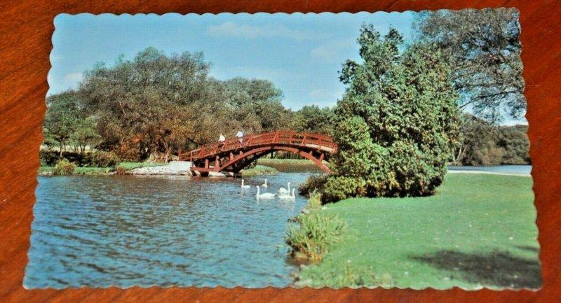 SHAKESPEAREAN STRATFORD FESTIVAL THEATRE 1960s ONTARIO CANADA POSTCARD Swans