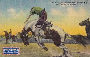 OKLAHOMA, 1930-1940's; A Bucking Bronco Tries Hard To Throw His Rider At An O...