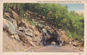 Tunnel On Skyline Drive Shenandoah National Park Virginia