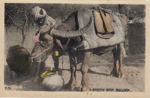 A Bhistie with Bullock , India , 00-10s