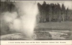 Yellowstone Park Geyser Spouting Steam NZ Graves Zenith Art Lusters Postcard