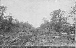 G32/ Fairfield Nebraska RPPC Postcard c1910 Cyclone Disaster Fallen Trees