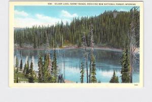 ANTIQUE POSTCARD NATIONAL STATE PARK MEDICINE BOW FOREST SILVER LAKE