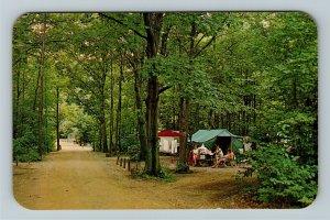 Sawyer MI- Michigan, Warren Dunes State Park, Scenic Drive, Chrome Postcard