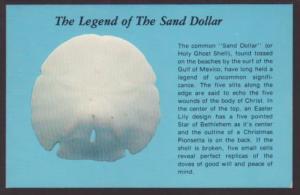 Legend of the Sand Dollar Postcard