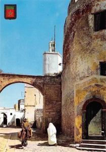 Morocco El Jadida, Calle Tipica, Typical Street Promenade Donkey