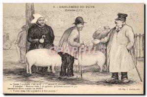 Old Postcard Drolleries country Pig Pig Humor