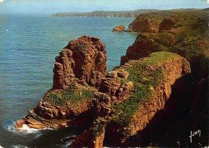 France Cap Frehel Rocher de la Grande Fauconniere Postcard