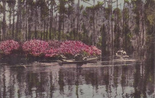 Cypress Gardens Summerville South Carolina 1947