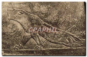 Old Postcard Assyria The wounded lioness Lion